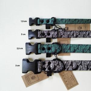 hundo_width_buckle_collars